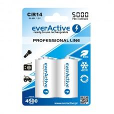 Аккумуляторы EverActive C/R14 5000 mAh, LSD, Professional Line 2шт./уп.